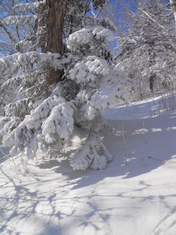 2012-01-15 050.jpg
